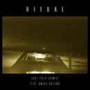 Real Feels (R I T U A L Remix) (feat. Kweku Collins)/R I T U A L