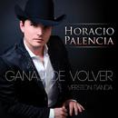 Ganas De Volver (Versión Banda)/Horacio Palencia