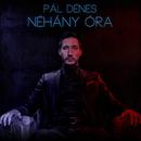 Néhány Óra/Pál Dénes