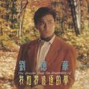 Wo He Wo Zhui Zhu De Meng/Andy Lau