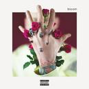 bloom/Machine Gun Kelly