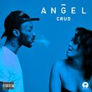 Crud/Angel