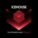 The Extended Mixes Vol. 2/ICEHOUSE