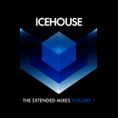 The Extended Mixes Vol. 1/ICEHOUSE