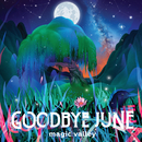 Magic Valley/Goodbye June