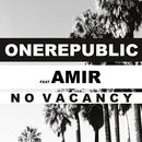 No Vacancy (feat. Amir)/OneRepublic