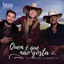 Quem É Que Não Gosta (feat. Bruno & Barretto)/Bruna Viola