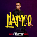 Burn (Steerner Remix)/LIAMOO