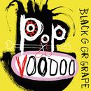 Nine Lives (Radio Edit)/Black Grape