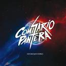 Cosmovisiones/Comisario Pantera