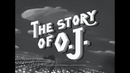 The Story Of O.J./JAY Z