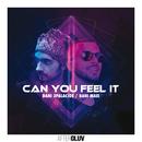 Can You Feel It/Dani 3Palacios, Dani Masi