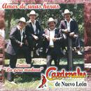Amor De Unas Horas/Cardenales De Nuevo León