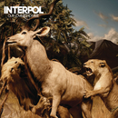 Our Love To Admire/Interpol