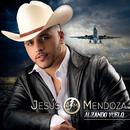 Alzando Vuelo/Jesús Mendoza