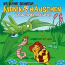 11: Warum hopsen Grashüpfer?/Die kleine Schnecke Monika Häuschen