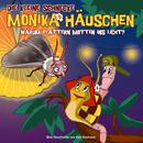 17: Warum flattern Motten ins Licht/Die kleine Schnecke Monika Häuschen