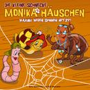 09: Warum weben Spinnen Netze?/Die kleine Schnecke Monika Häuschen