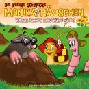 22: Warum buddeln Maulwürfe Hügel?/Die kleine Schnecke Monika Häuschen