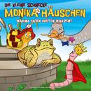 31: Warum haben Kröten Warzen?/Die kleine Schnecke Monika Häuschen