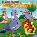 39: Warum gurren Tauben?/Die kleine Schnecke Monika Häuschen