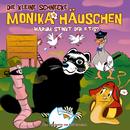 40: Warum stinkt der Iltis?/Die kleine Schnecke Monika Häuschen