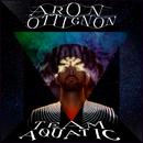 Stonefish/Aron Ottignon