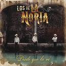 Desde Que La Vi/Los De La Noria