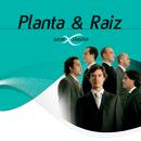 Planta & Raiz Sem Limite/Planta E Raiz