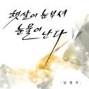 Sunshine/Nam Young Joo