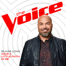 Have A Little Faith In Me (The Voice Performance)/Blaine Long