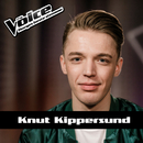 Million Reasons/Knut Kippersund