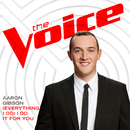 (Everything I Do) I Do It For You (The Voice Performance)/Aaron Gibson