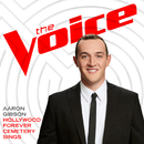 Hollywood Forever Cemetery Sings (The Voice Performance)/Aaron Gibson