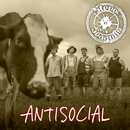 Antisocial (English Version)/Steve 'n' Seagulls