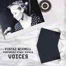 Voices (feat. Aimee Sophia)/Fistaz Mixwell