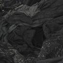 BLACK ROSE/Van Norith, K.A., Juvie Lin