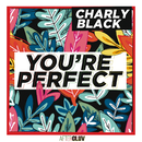 You're Perfect/Charly Black