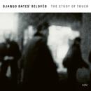 The Study Of Touch/Django Bates' Belovèd