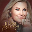 Juldagsmorgon/Elisa Lindström