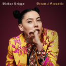 Dream (Acoustic)/Bishop Briggs