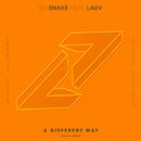 A Different Way (Noizu Remix) (feat. Lauv)/DJ Snake