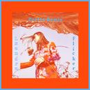 Flicker (Perttu Remix)/Lxandra