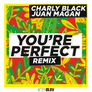 You're Perfect (Remix) (feat. Juan Magan)/Charly Black