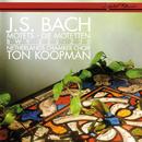 Bach, J.S.: 6 Motets/Ton Koopman, Ageet Zweistra, Margaret Urquhart, Maarten van der Heyden, Jan Kleinbussink, Netherlands Chamber Choir