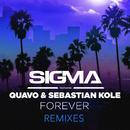 Forever (Remixes) (feat. Quavo, Sebastian Kole)/Sigma