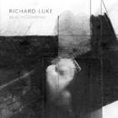 Beachcombing/Richard Luke