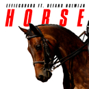 Horse (feat. Défano Holwijn)/EFFIEGOHARD