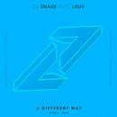 A Different Way (DEVAULT Remix) (feat. Lauv)/DJ Snake