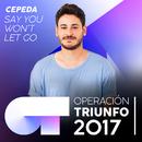 Say You Won't Let Go (Operación Triunfo 2017)/Cepeda